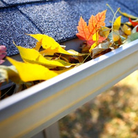 Gutter Cleaning Putney
