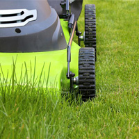Lawn Mowing Putney
